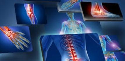 Orthopedics Specialist