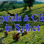 Hospital & Clinic List in Sylhet